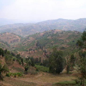 22ème commémoration du génocide des Tutsis au Rwanda