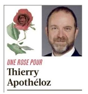 Une rose dans L'illustré